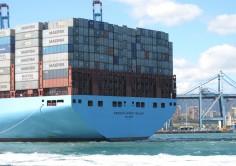 CONTENEDORES. 99 megaships operaron en 2015 en el Puerto de Algeciras