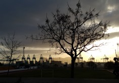 MEDIO AMBIENTE. El Puerto de Algeciras ya tiene su certificado PERS